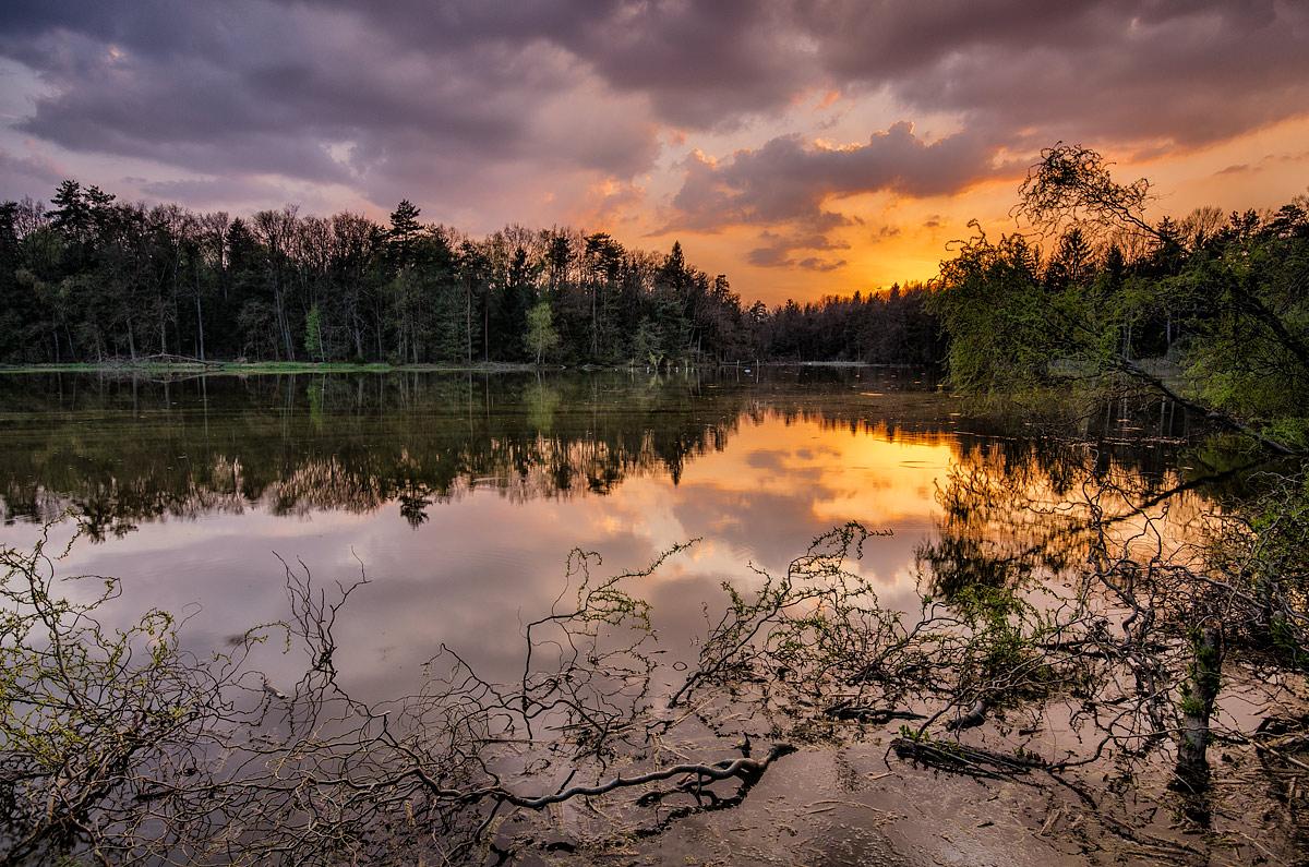 Turnove-Ponds-3