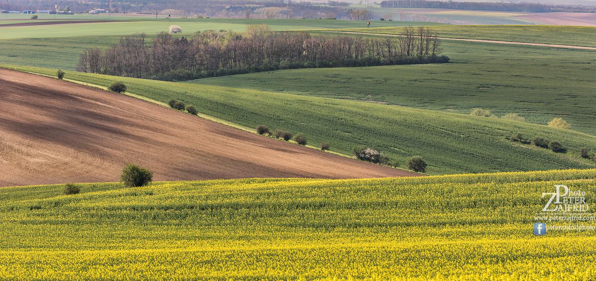 Moravska-2