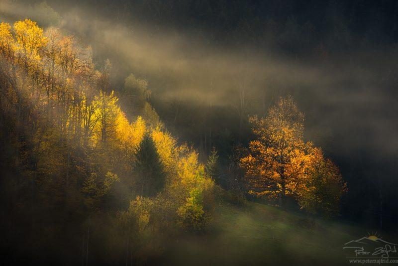 Lovrenc na Pohorju
